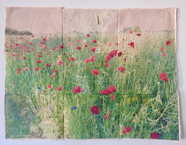Artwork made up of 9 panels. Overall image is a field of poppies