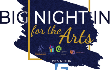 Big Night In for the Arts LOGO